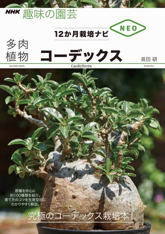 NHK趣味の園芸 12か月栽培ナビNEO 多肉植物 コーデックス