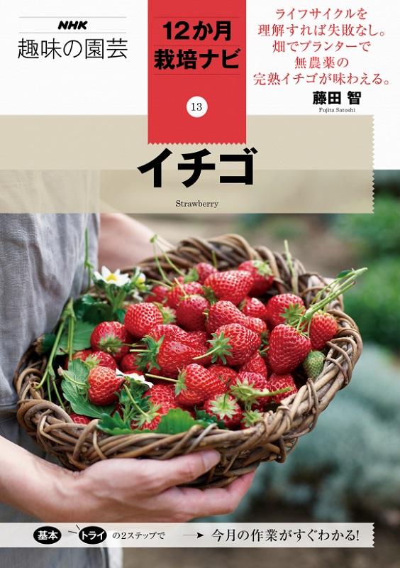 NHK趣味の園芸 12か月栽培ナビ⑬イチゴ