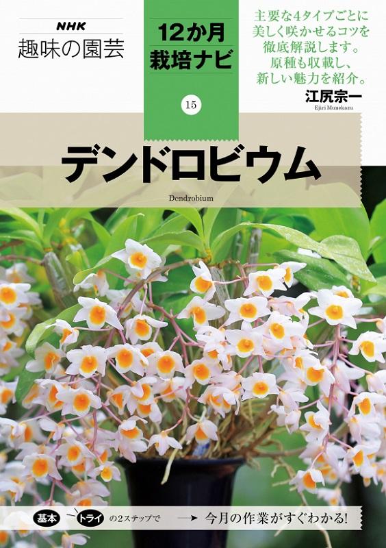 NHK趣味の園芸 12か月栽培ナビ⑮デンドロビウム