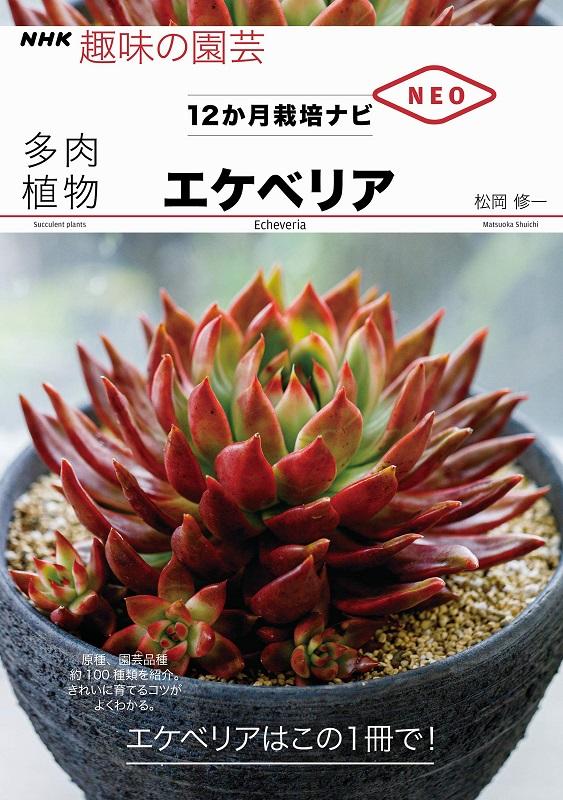 NHK趣味の園芸 12か月栽培ナビNEO 多肉植物 エケベリア